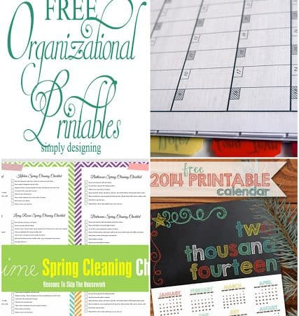 11 Free Organizational Printables