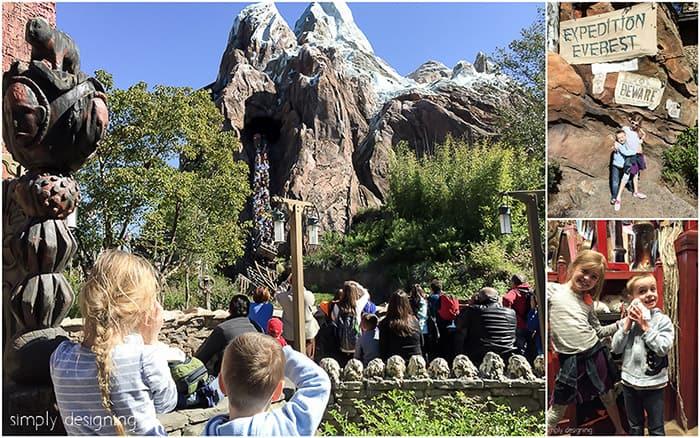 Expedition Everest Ride at Disney's Animal Kingdom