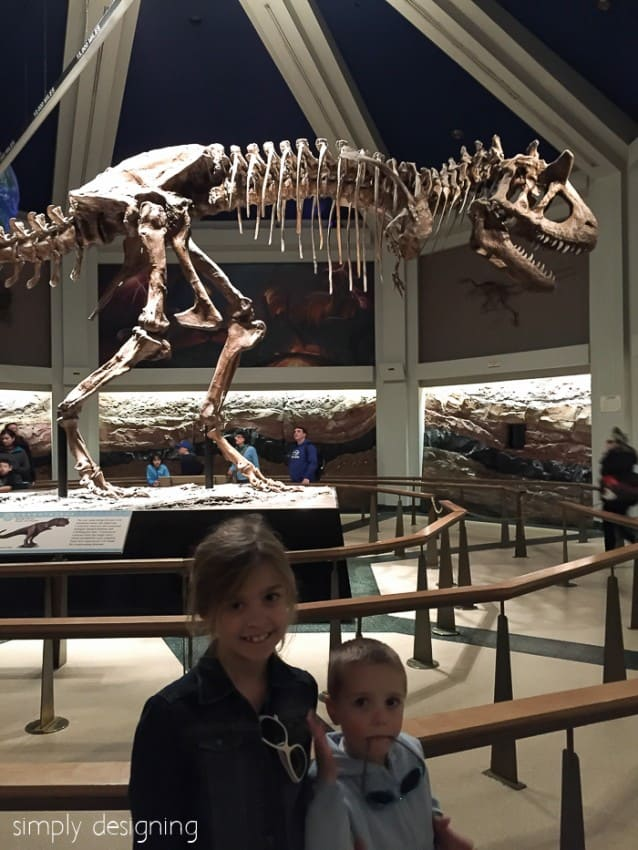 Dinosaur skeleton at Animal Kingdom