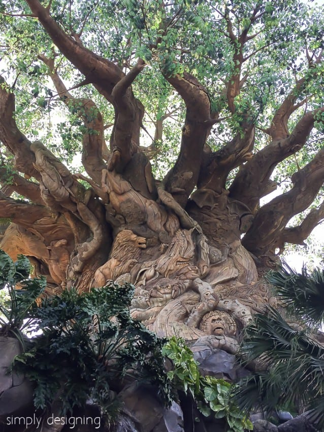 Animal Kingdom Close up of Carvings in the Tree of Life