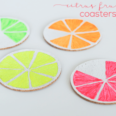 citrus fruit coasters