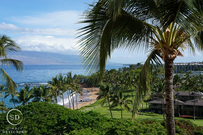 Maui Wailea Food And Wine Festival