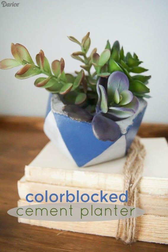 Colorblocked-Cement-Planter-02519-1
