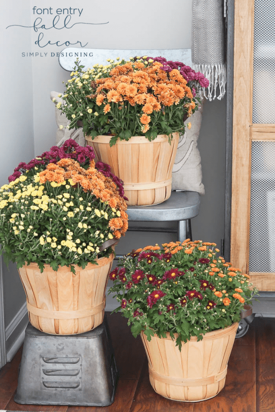 Front Entry Fall Decor with Multi Colored Mums