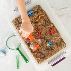 catching bugs in this DIY insect sensory bin
