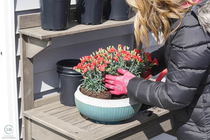 place flowers in pot