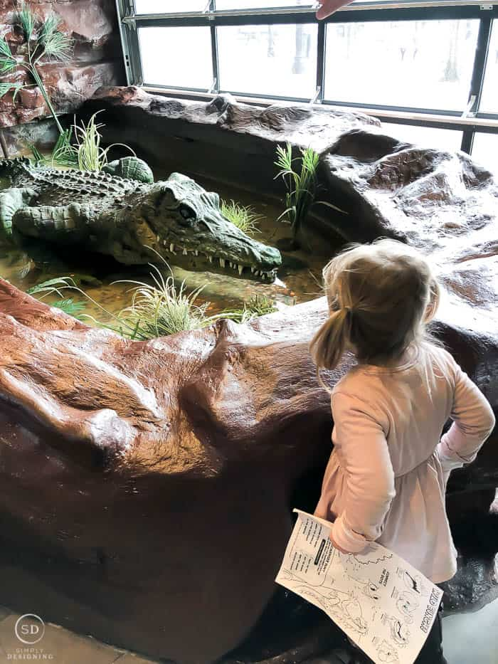 Rainforest Cafe is great for the whole family at Niagara Falls