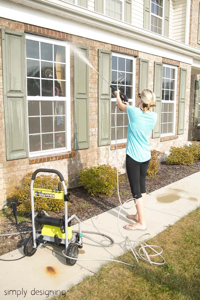 removal of wasps nest with a power sprayer