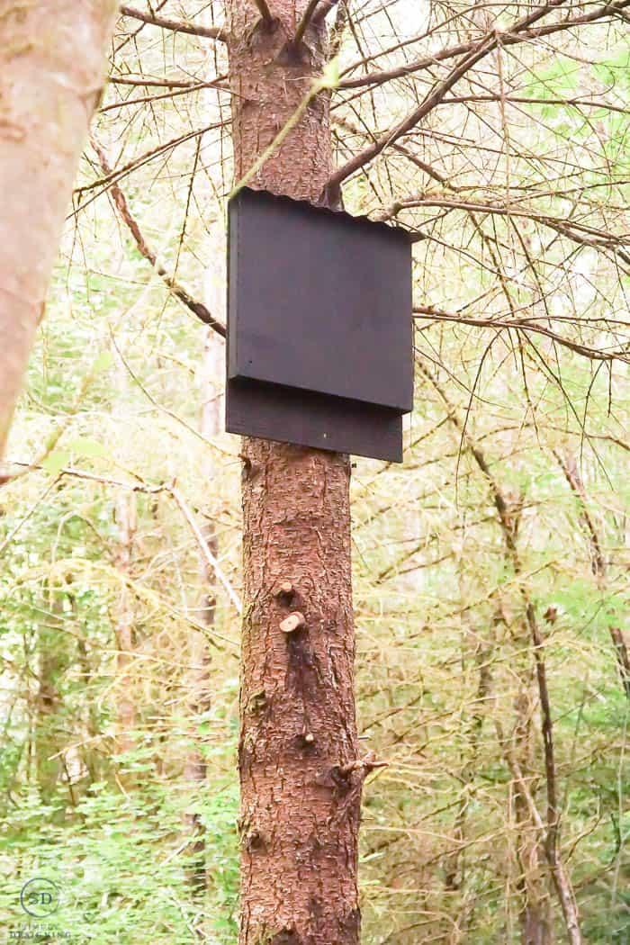 how to make a bat house