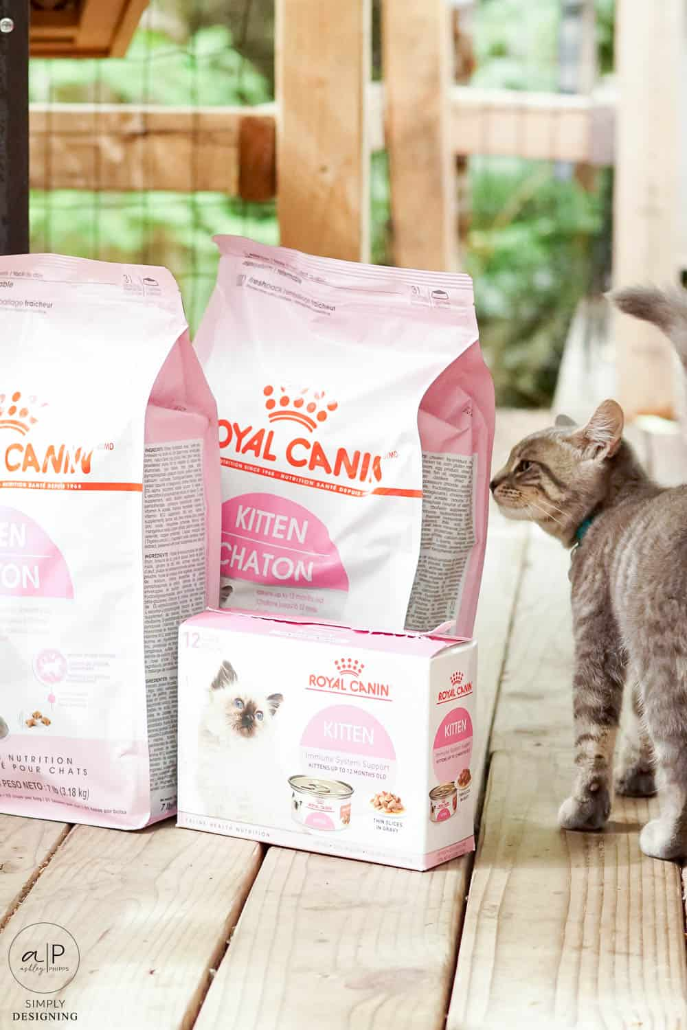 cat sniffing cat food bags